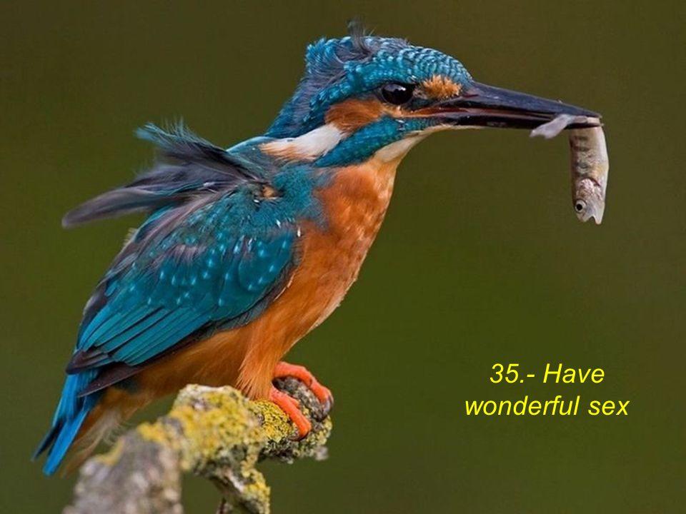 35.- Have wonderful sex