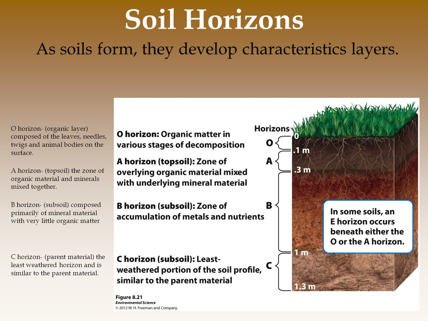 As soils form, they develop characteristics layers.