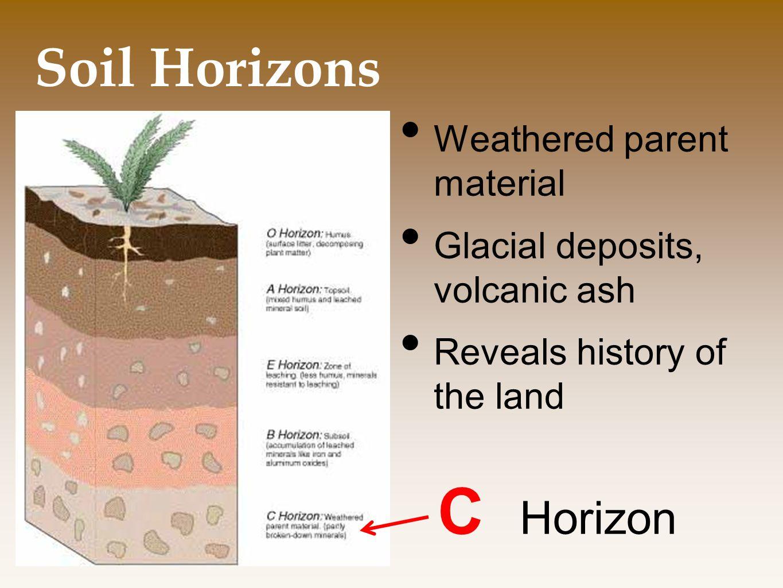C Horizon Soil Horizons Weathered parent material
