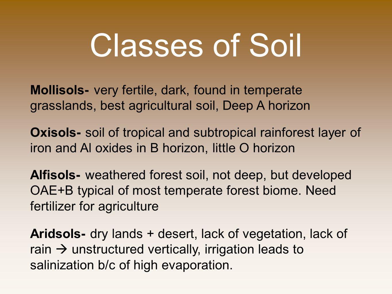 Classes of Soil Mollisols- very fertile, dark, found in temperate grasslands, best agricultural soil, Deep A horizon.