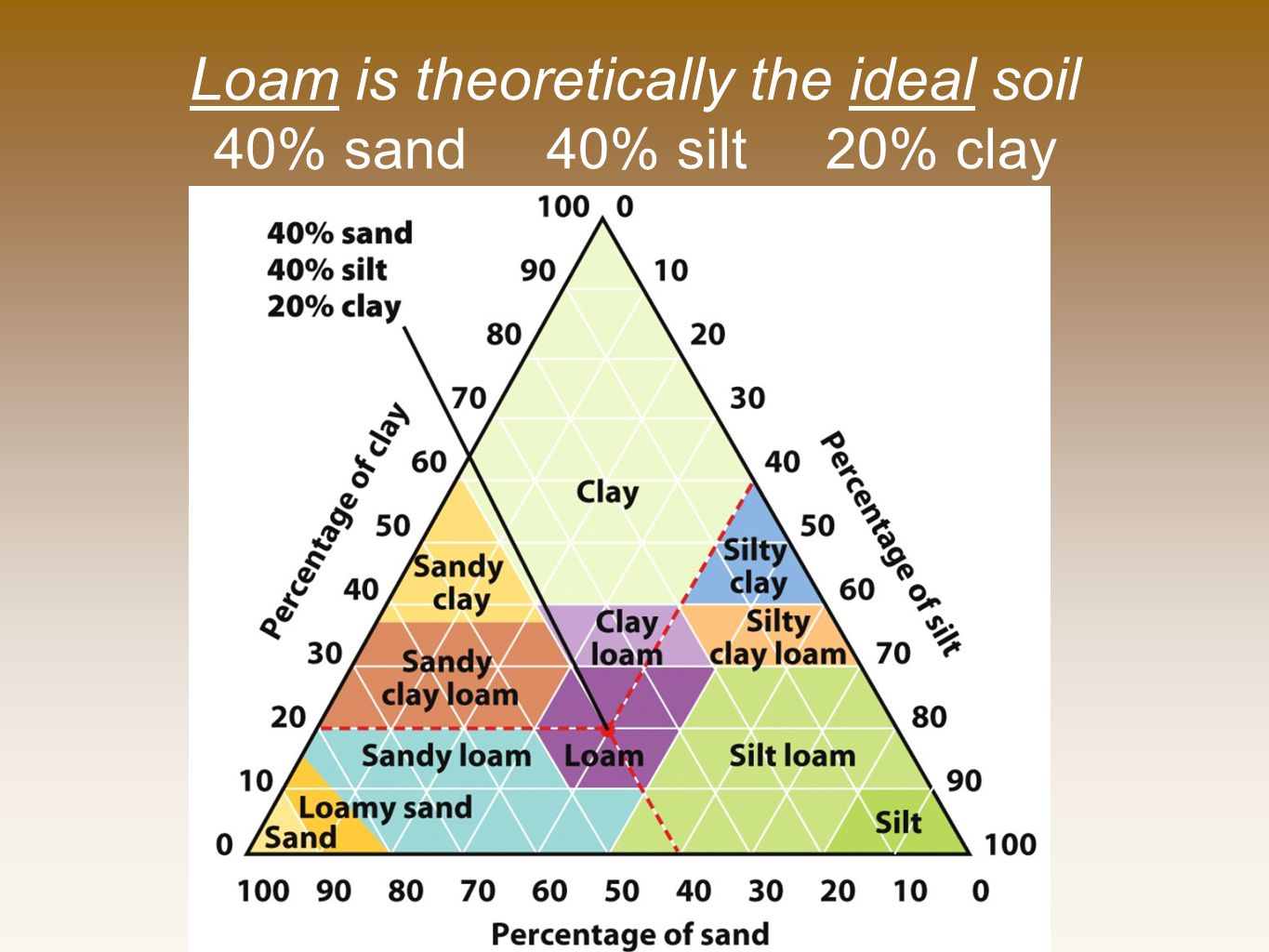 Loam is theoretically the ideal soil 40% sand 40% silt 20% clay