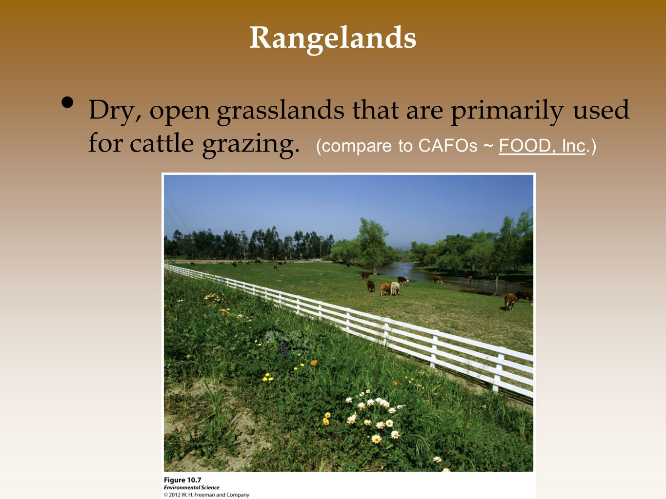 Rangelands Dry, open grasslands that are primarily used for cattle grazing.