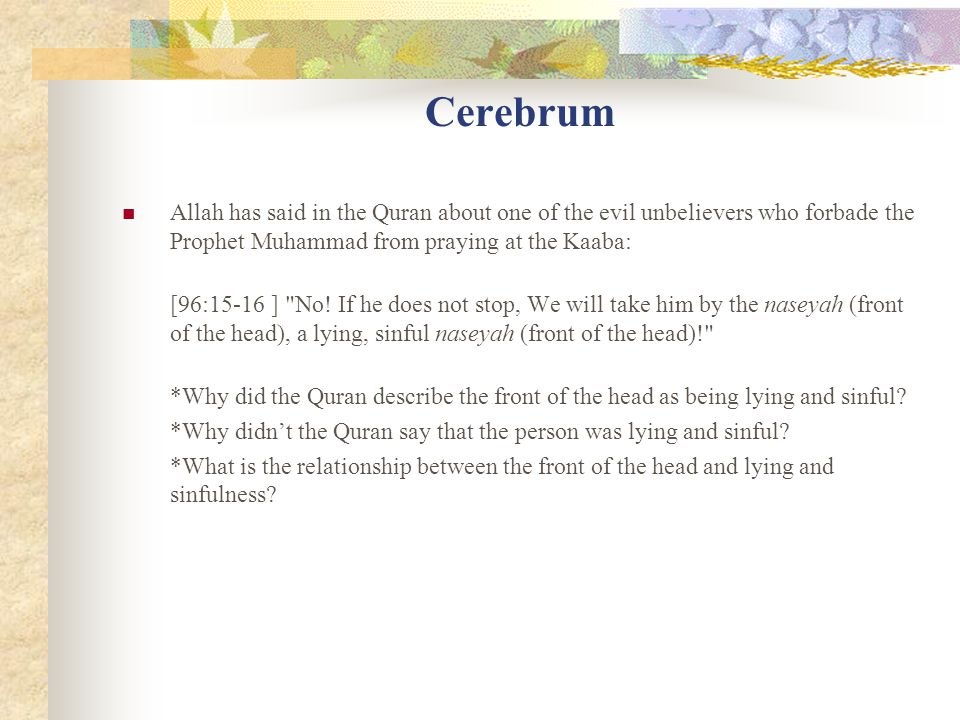 Cerebrum Allah has said in the Quran about one of the evil unbelievers who forbade the Prophet Muhammad from praying at the Kaaba: