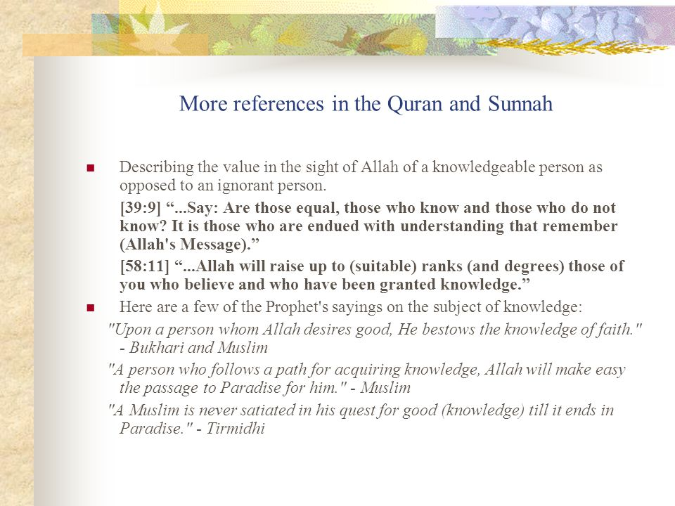 More references in the Quran and Sunnah