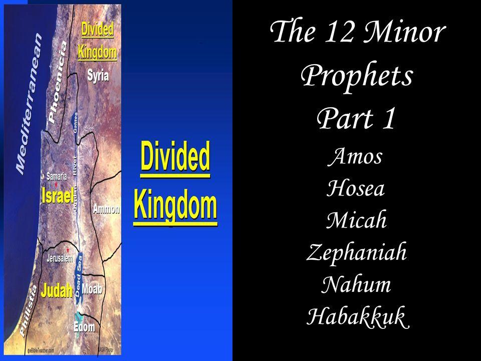 The 12 Minor Prophets Part 1 Amos Hosea Micah Zephaniah Nahum Habakkuk