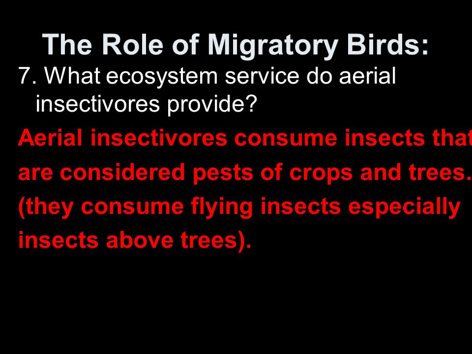 The Role of Migratory Birds: