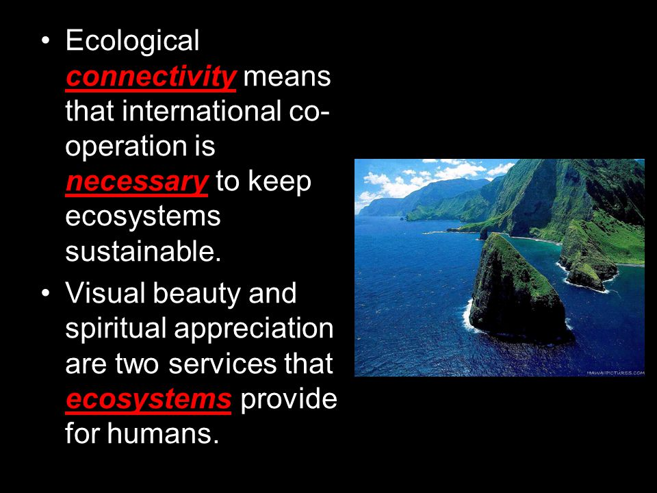 Ecological connectivity means that international co-operation is necessary to keep ecosystems sustainable.