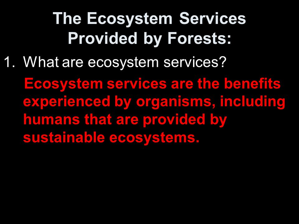 The Ecosystem Services Provided by Forests: