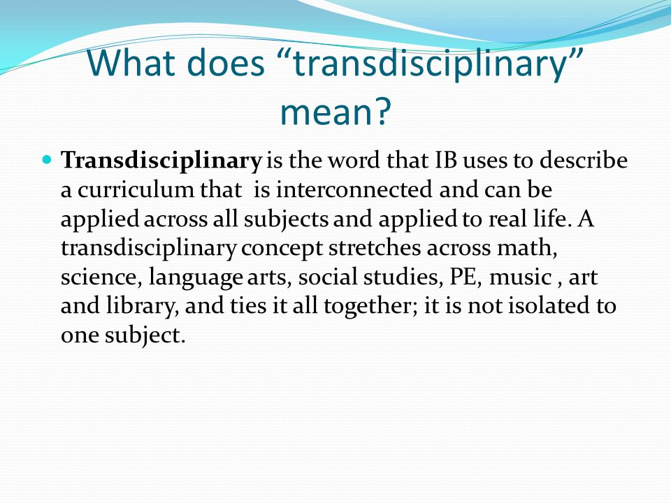 What does transdisciplinary mean