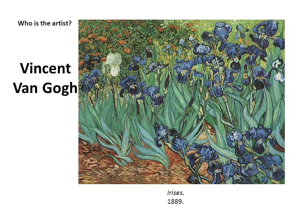 Vincent Van Gogh Who is the artist Irises. 1889.