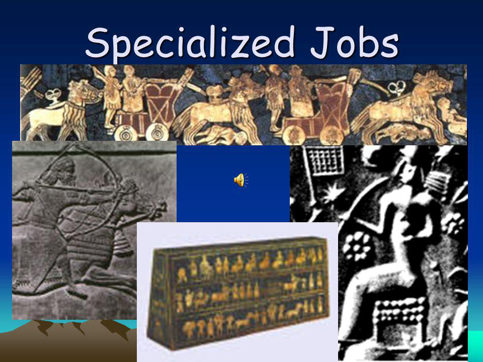 Specialized Jobs