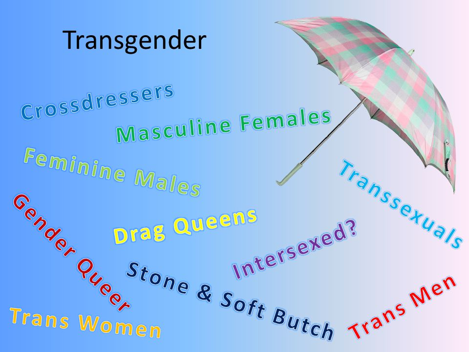 Transgender Crossdressers Masculine Females Feminine Males