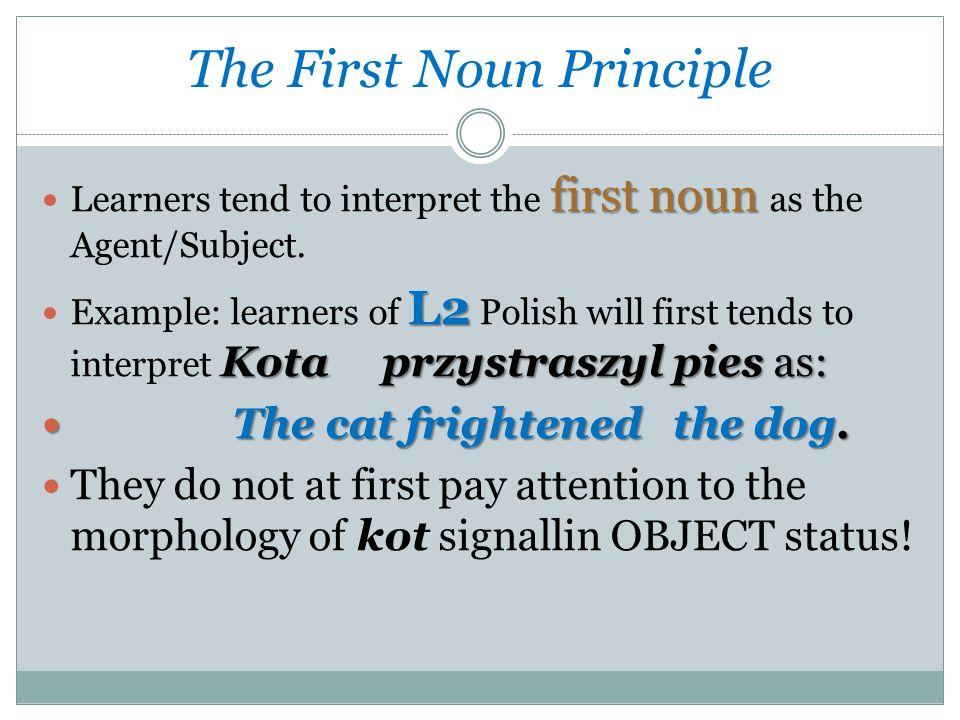 The First Noun Principle