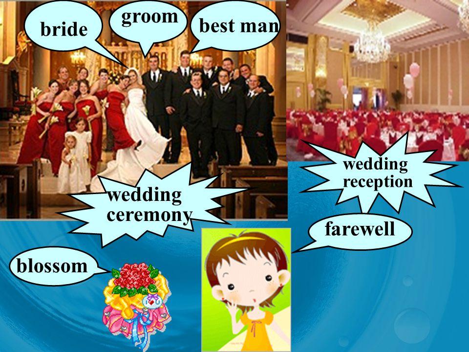 groom best man bride wedding ceremony wedding reception farewell