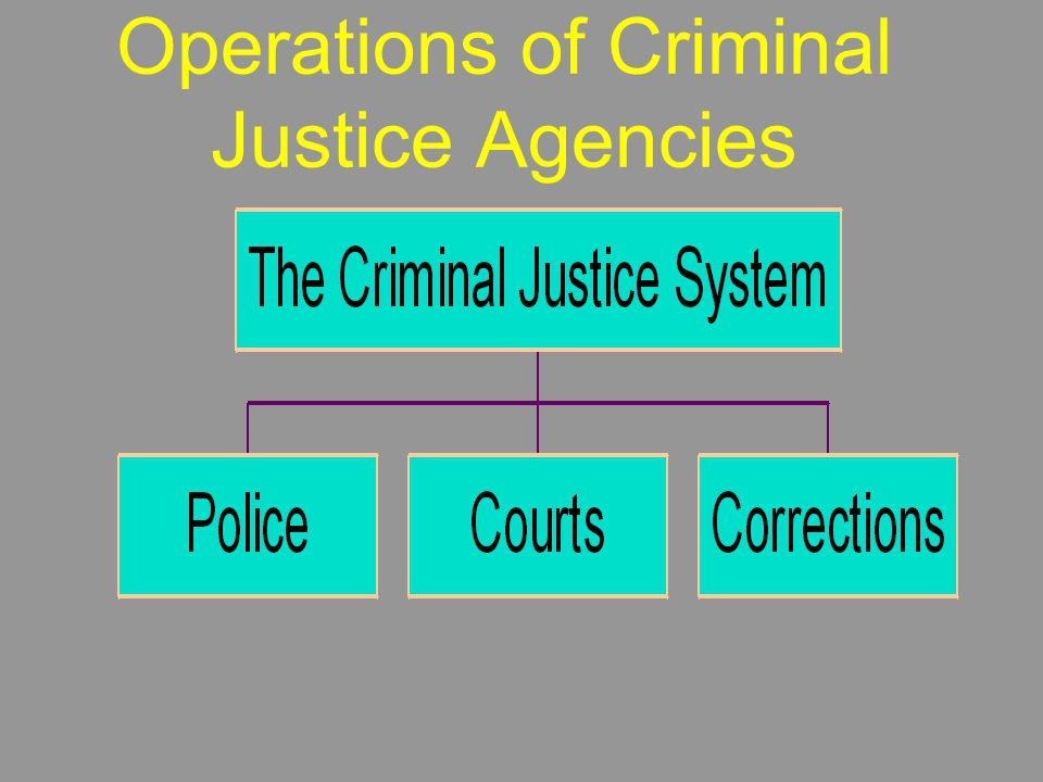 Operations of Criminal Justice Agencies