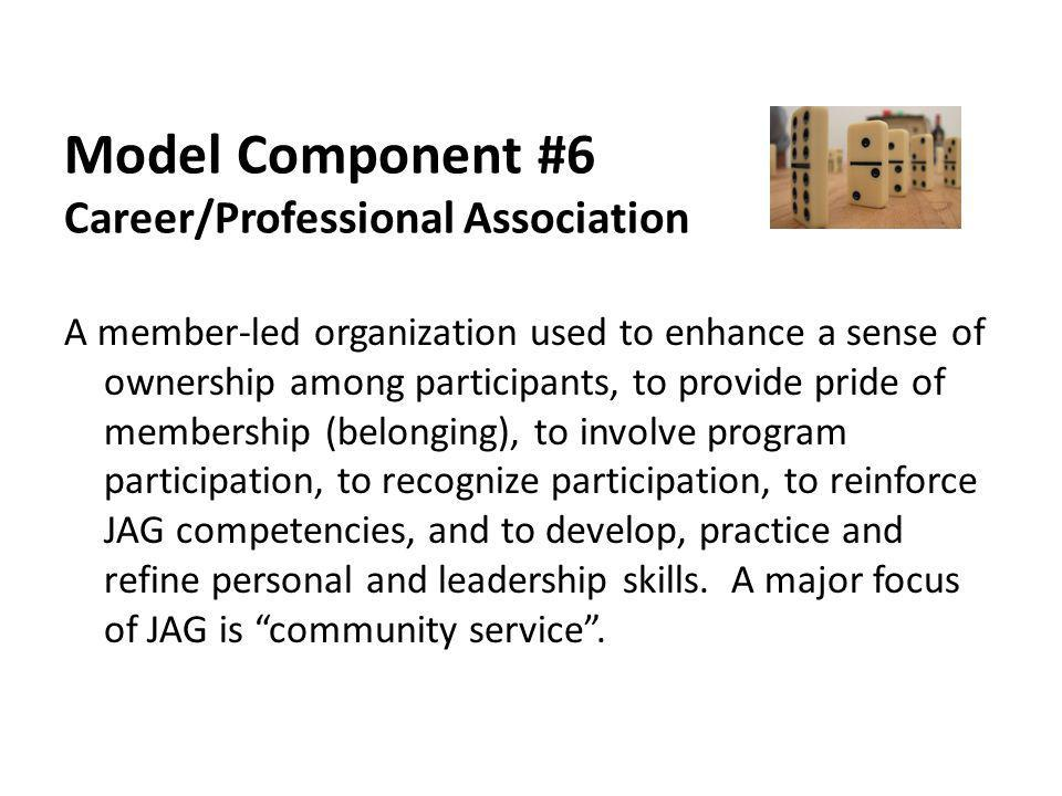 Model Component #6 Career/Professional Association