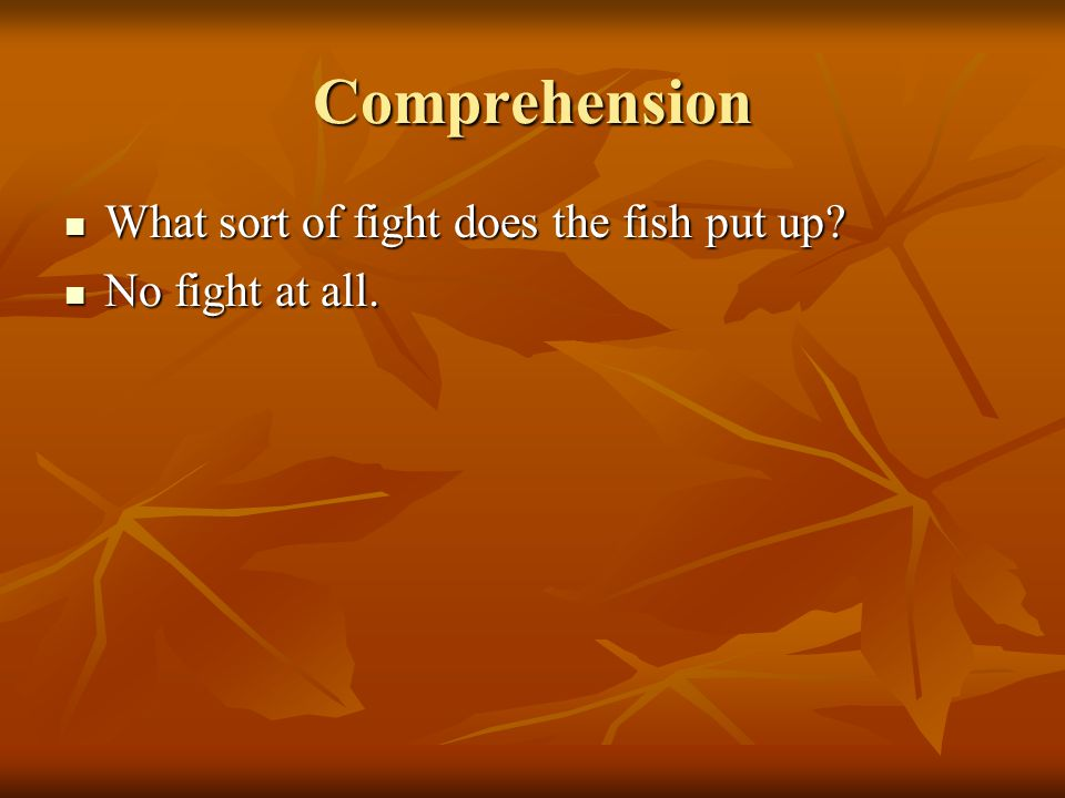 Comprehension What sort of fight does the fish put up
