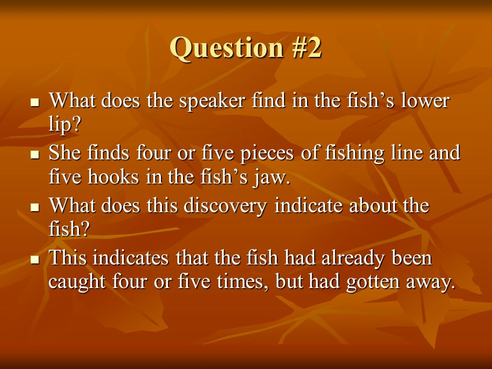 Question #2 What does the speaker find in the fish's lower lip