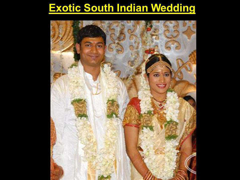 Exotic South Indian Wedding
