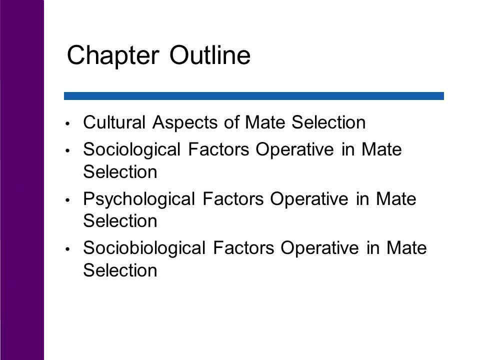 Chapter Outline Cultural Aspects of Mate Selection