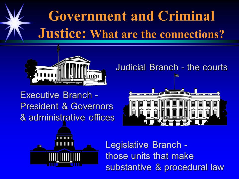 Government and Criminal Justice: What are the connections