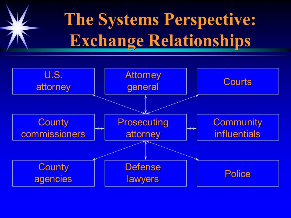 The Systems Perspective: Exchange Relationships