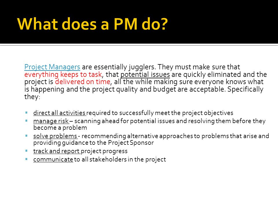 What does a PM do