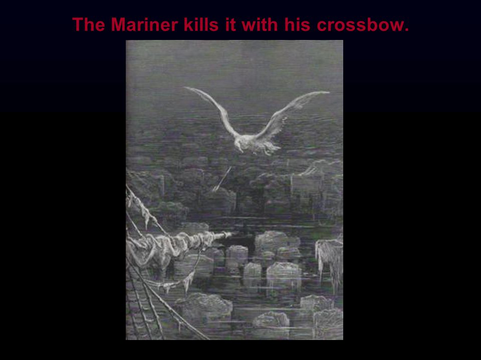 The Mariner kills it with his crossbow.