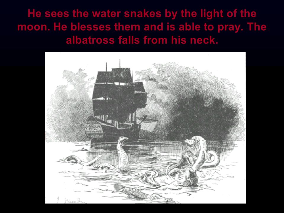 He sees the water snakes by the light of the moon