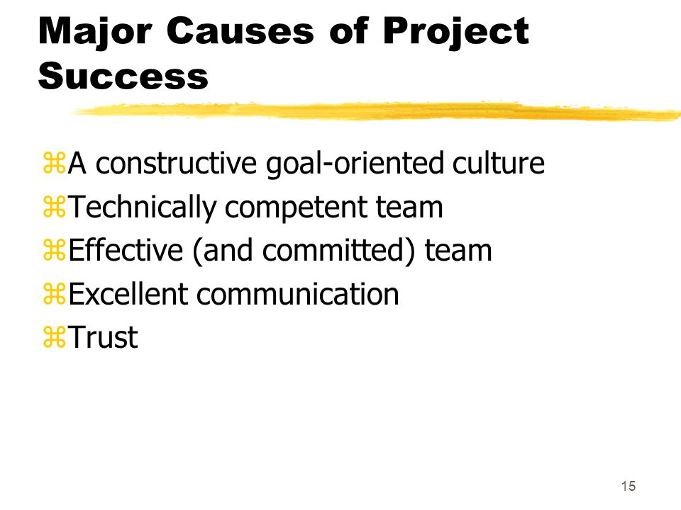 Major Causes of Project Success