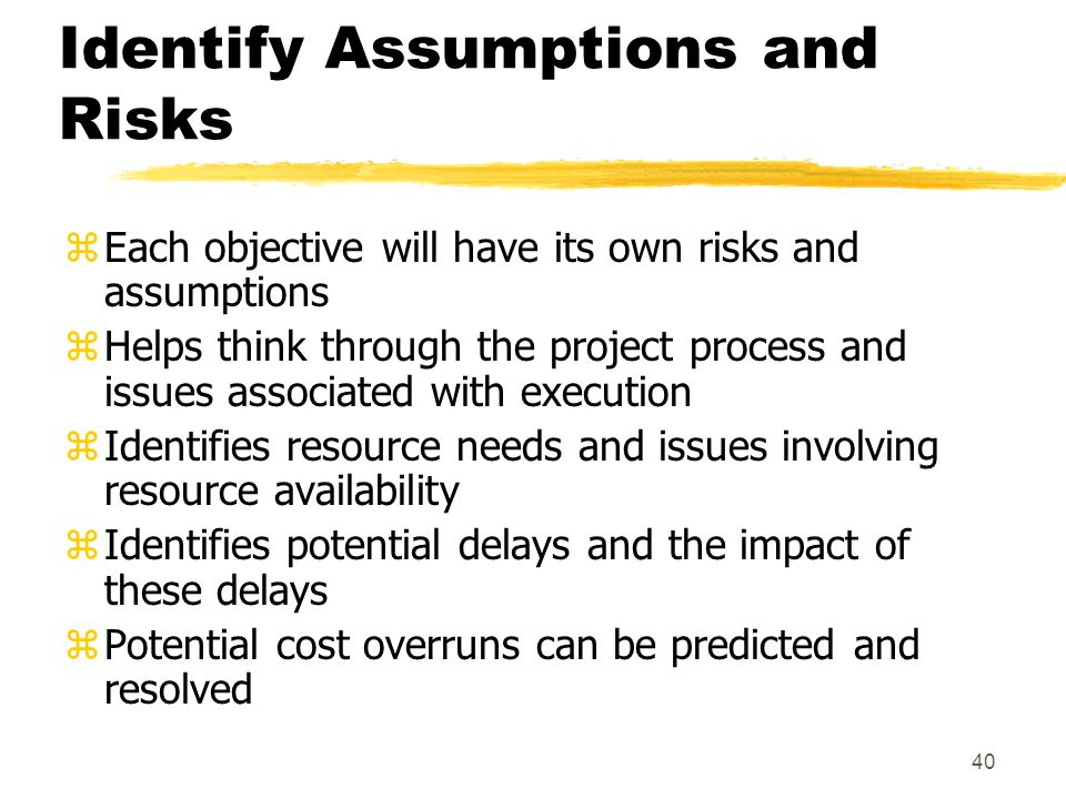 Identify Assumptions and Risks