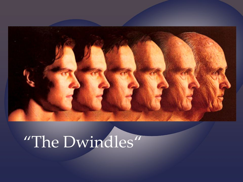 The Dwindles