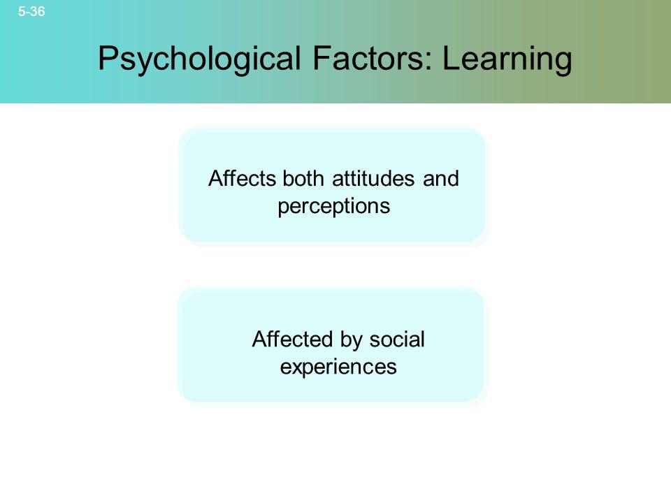 Psychological Factors: Learning