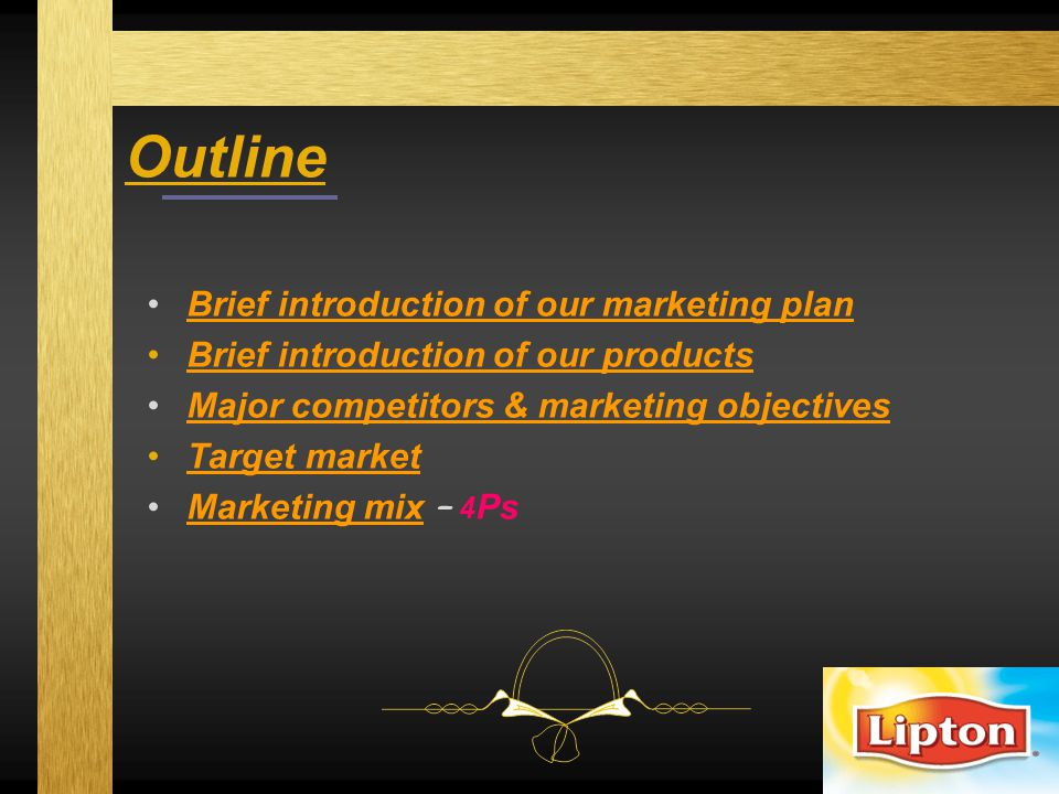 Outline Brief introduction of our marketing plan