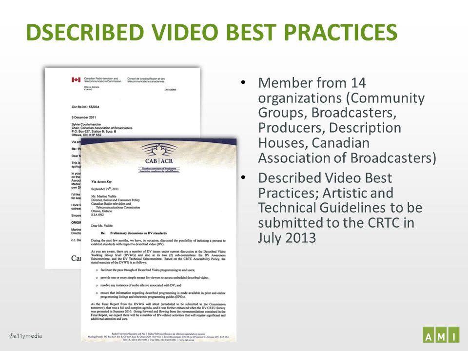 DSECRIBED VIDEO BEST PRACTICES
