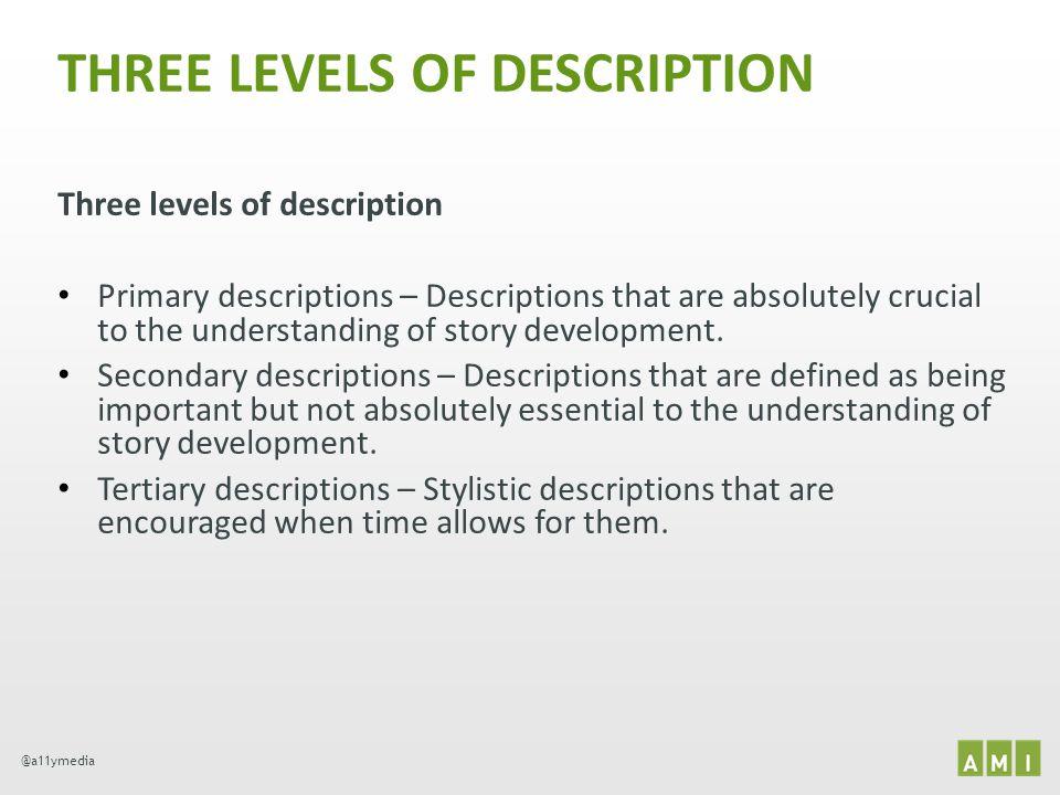 THREE LEVELS OF DESCRIPTION