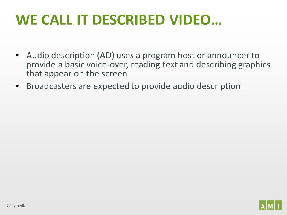 WE CALL IT DESCRIBED VIDEO…
