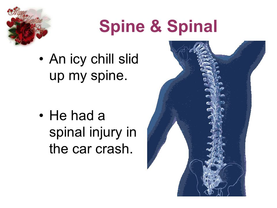 Spine & Spinal An icy chill slid up my spine.