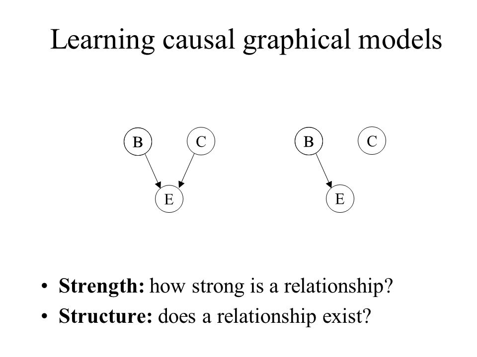 Learning causal graphical models