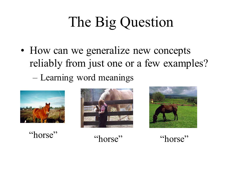 The Big Question How can we generalize new concepts reliably from just one or a few examples Learning word meanings.