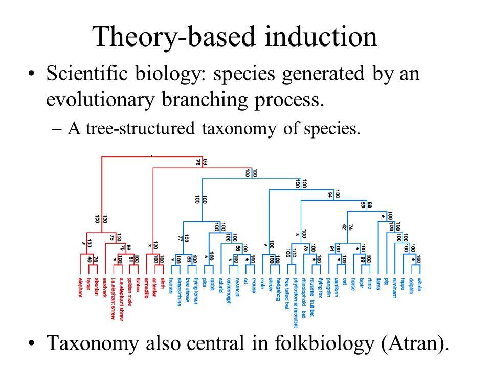 Theory-based induction