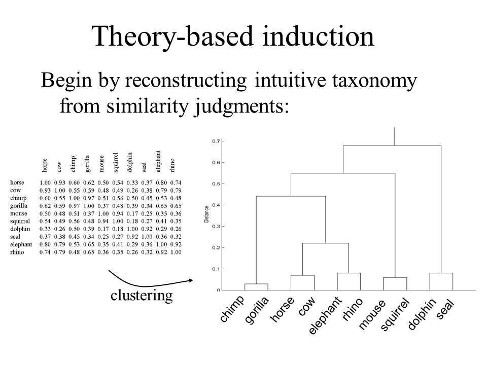 Theory-based induction