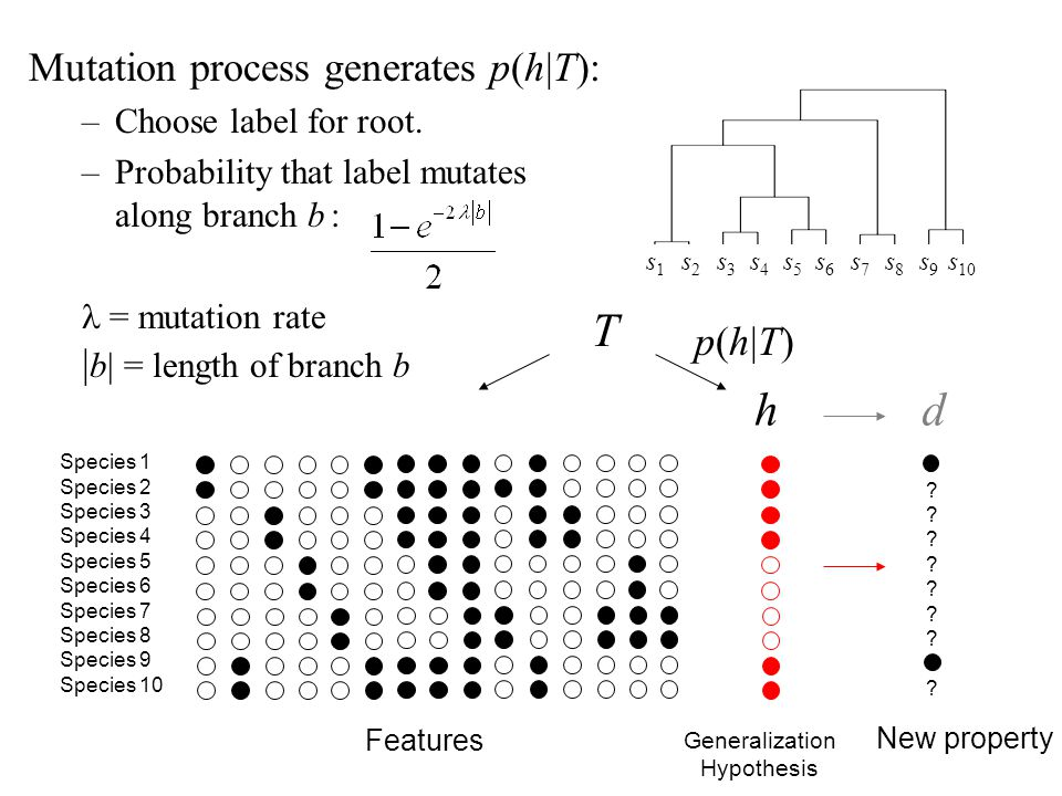 T h d Mutation process generates p(h|T): |b| = length of branch b