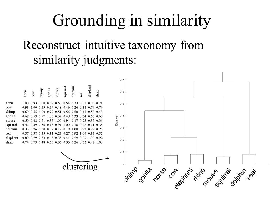 Grounding in similarity