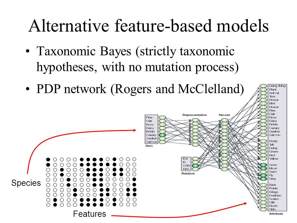 Alternative feature-based models