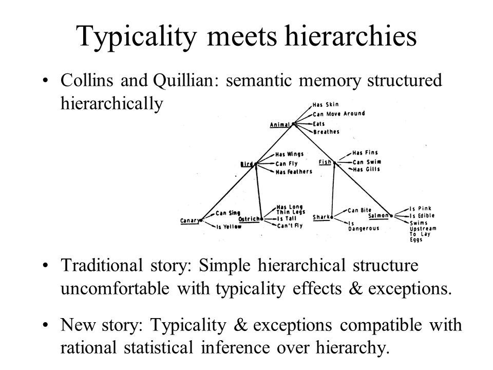 Typicality meets hierarchies