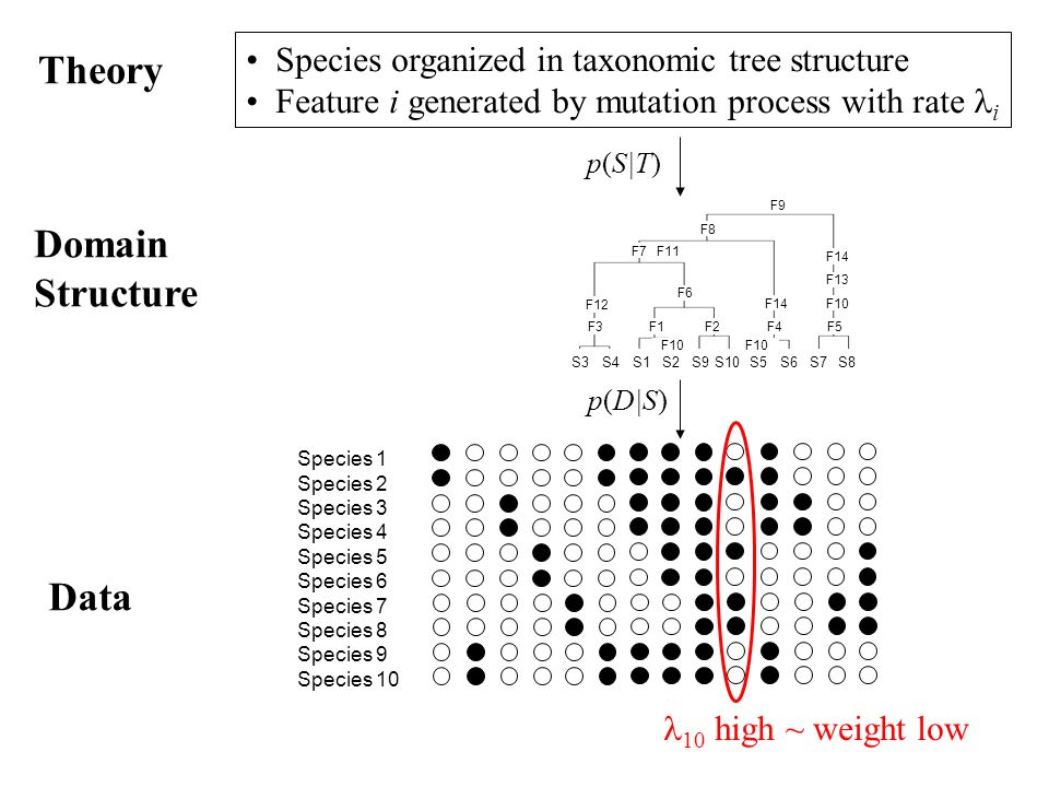 Theory Domain Structure Data