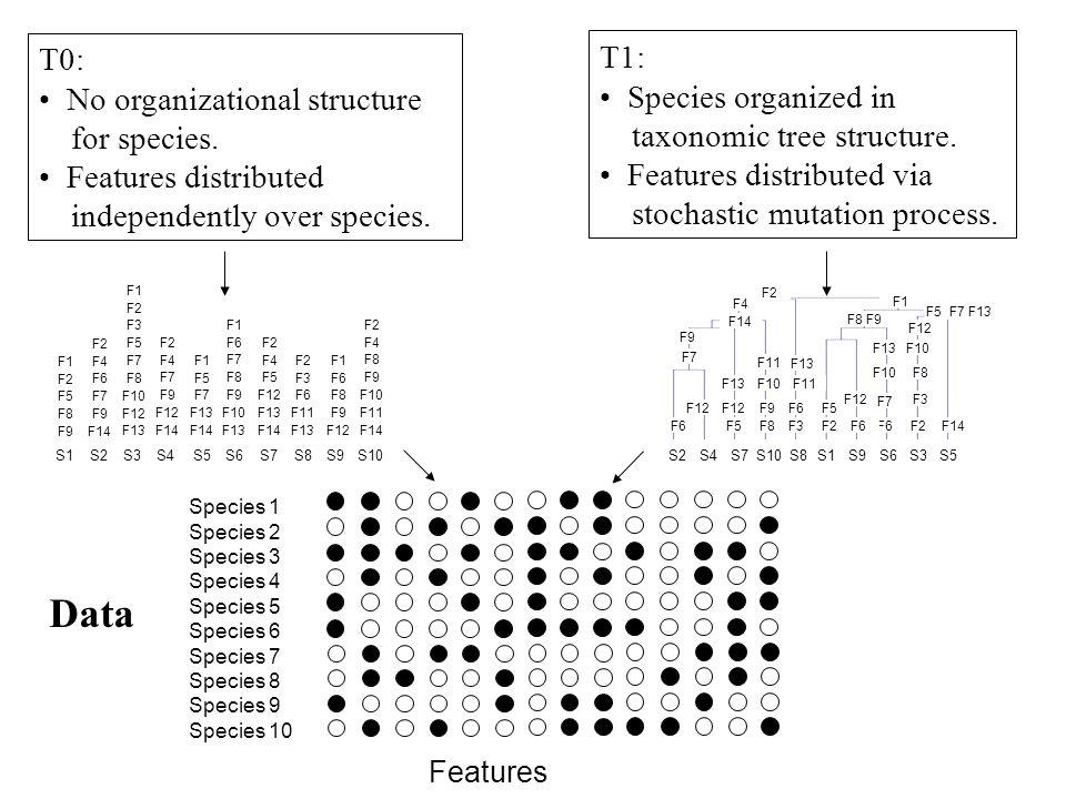 Data T0: T1: No organizational structure Species organized in