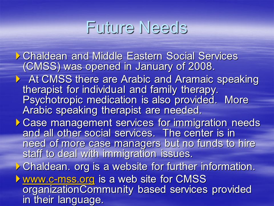 Future Needs Chaldean and Middle Eastern Social Services (CMSS) was opened in January of 2008.
