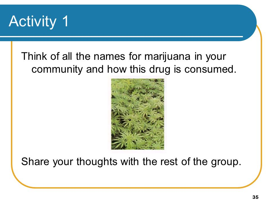 Activity 1 Think of all the names for marijuana in your community and how this drug is consumed.